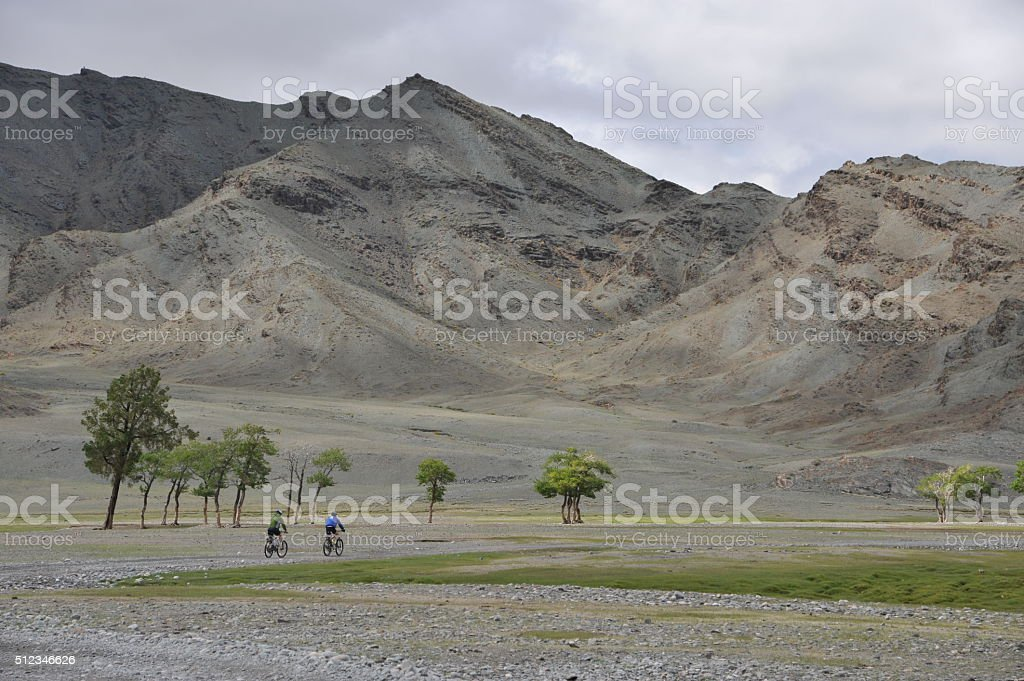 Race to the top, off road cycling in Mongolia stock photo