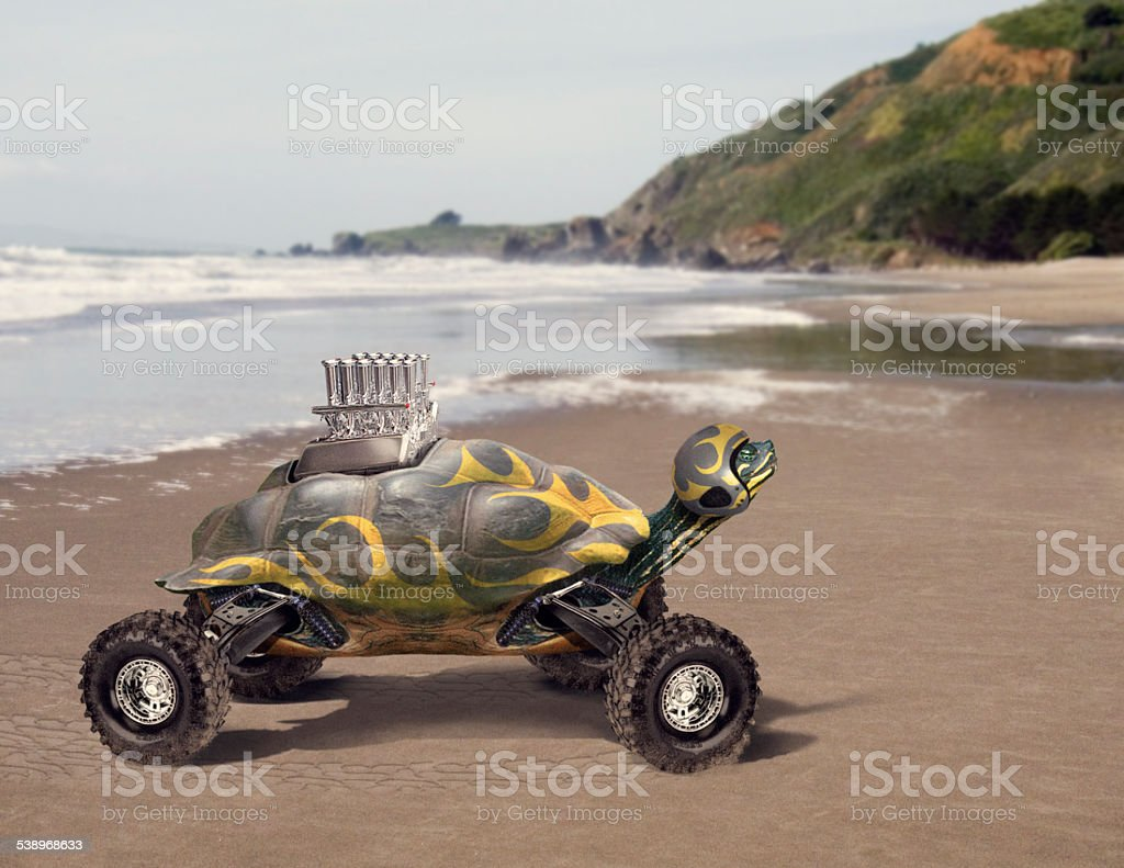 Racecar Turtle stock photo