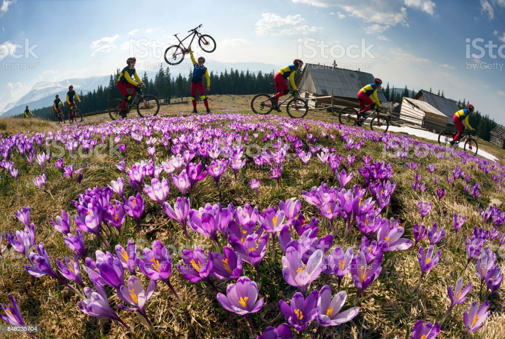 racer among  fantastic gentle flowers stock photo