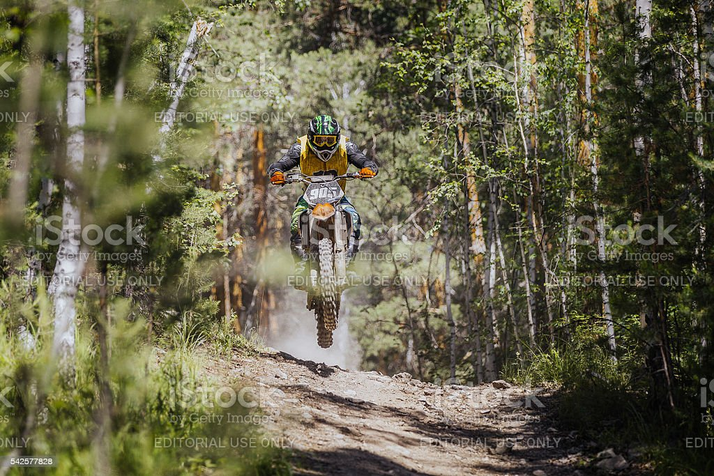 racer on a motorcycle jumping over a hill in fores stock photo