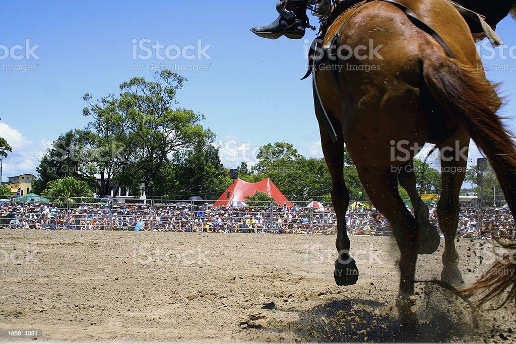 Racing Cowboy stock photo