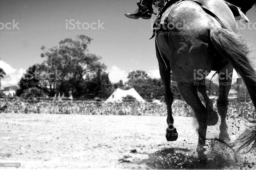 Racing Cowboy v2 stock photo