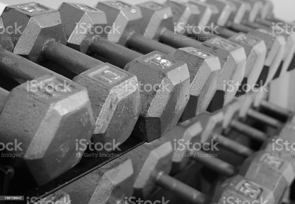 Rack of Free Weight Dumbells royalty-free stock photo