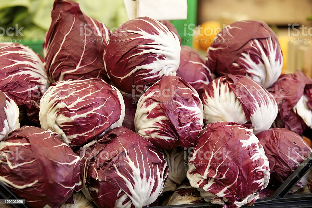 Radicchio stock photo