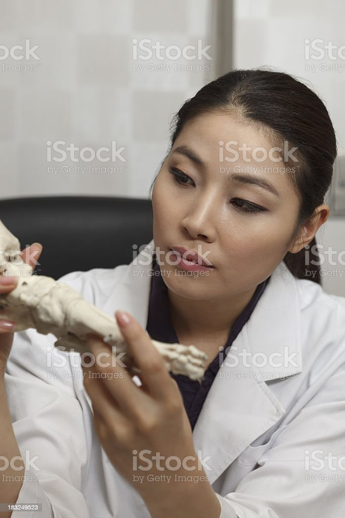 Radiologist at work royalty-free stock photo