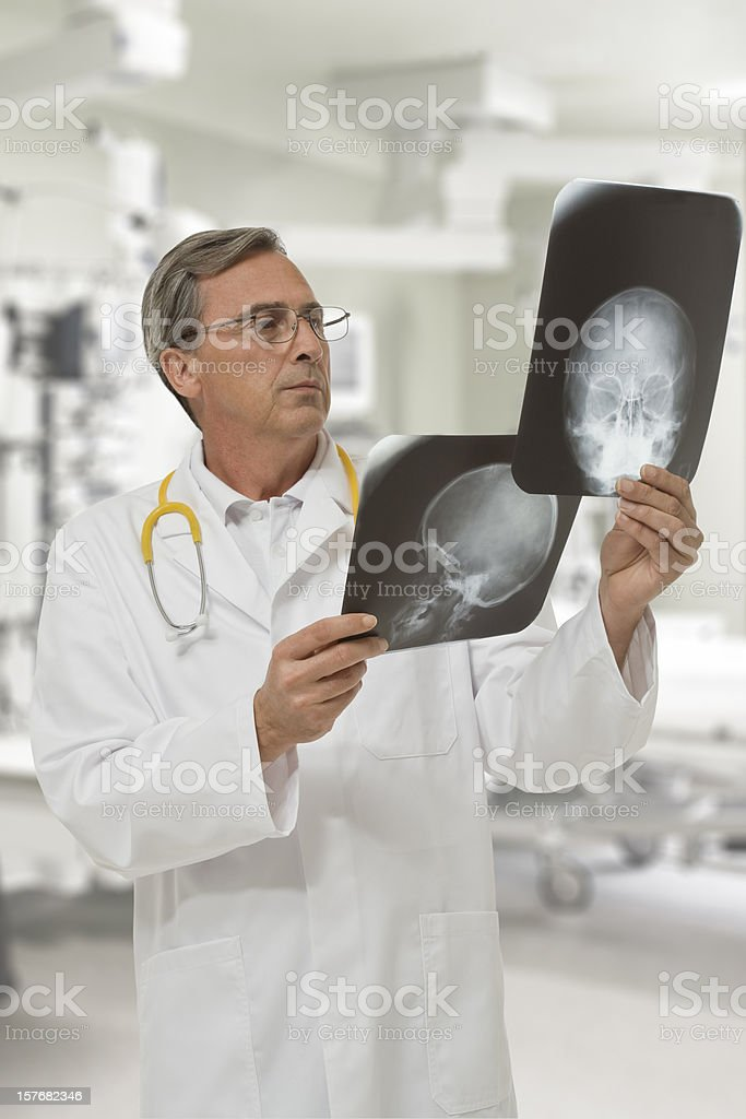 Radiologist reviewing two radiography stock photo