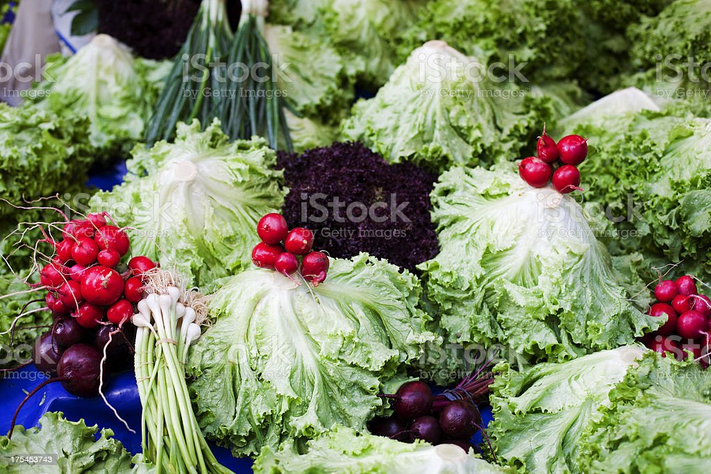 Radish and spring onion royalty-free stock photo