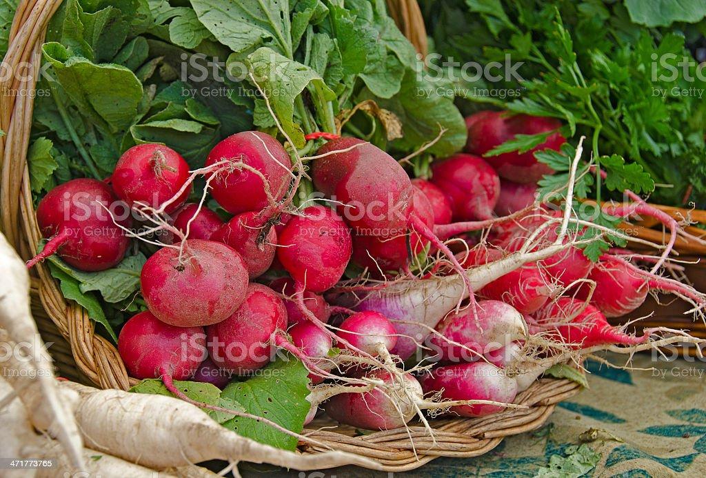 radish bunch in basket royalty-free stock photo
