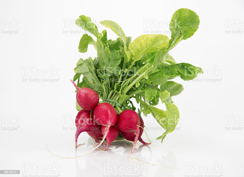 Radish royalty-free stock photo