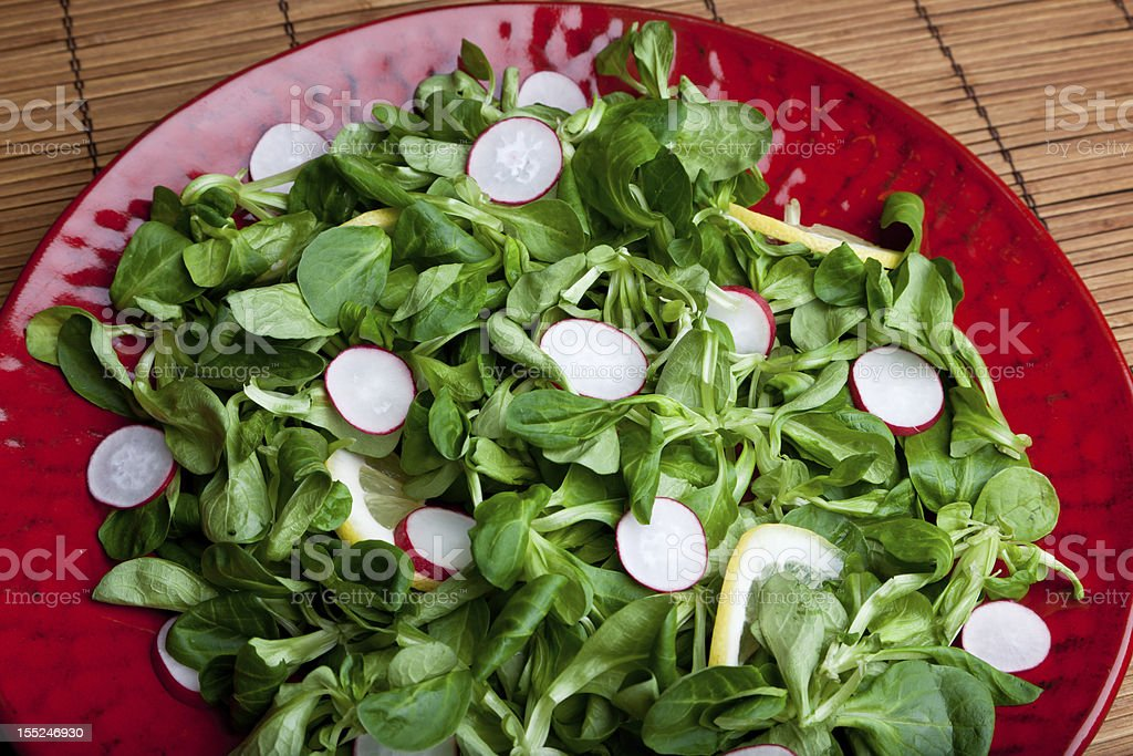 Radish Salad on Red Platter royalty-free stock photo