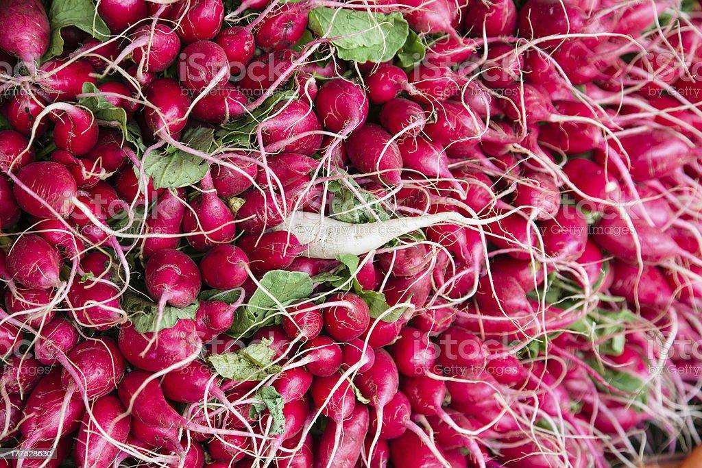 Radishes at market royalty-free stock photo