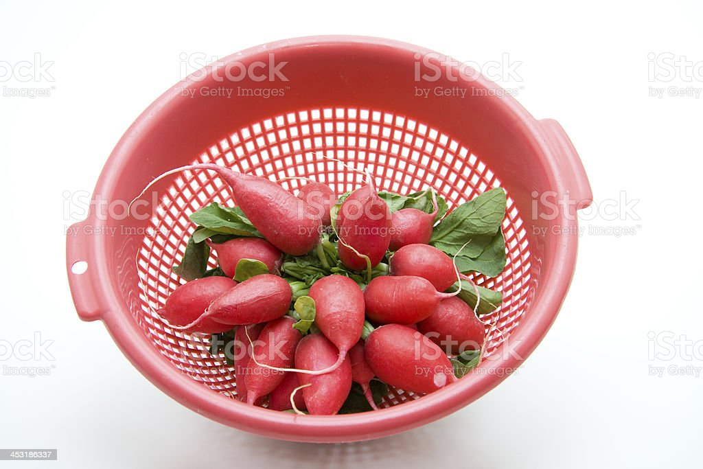 Radishes in the culinary sieve stock photo