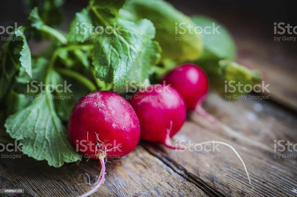 Radishes on rustic wooden background stock photo