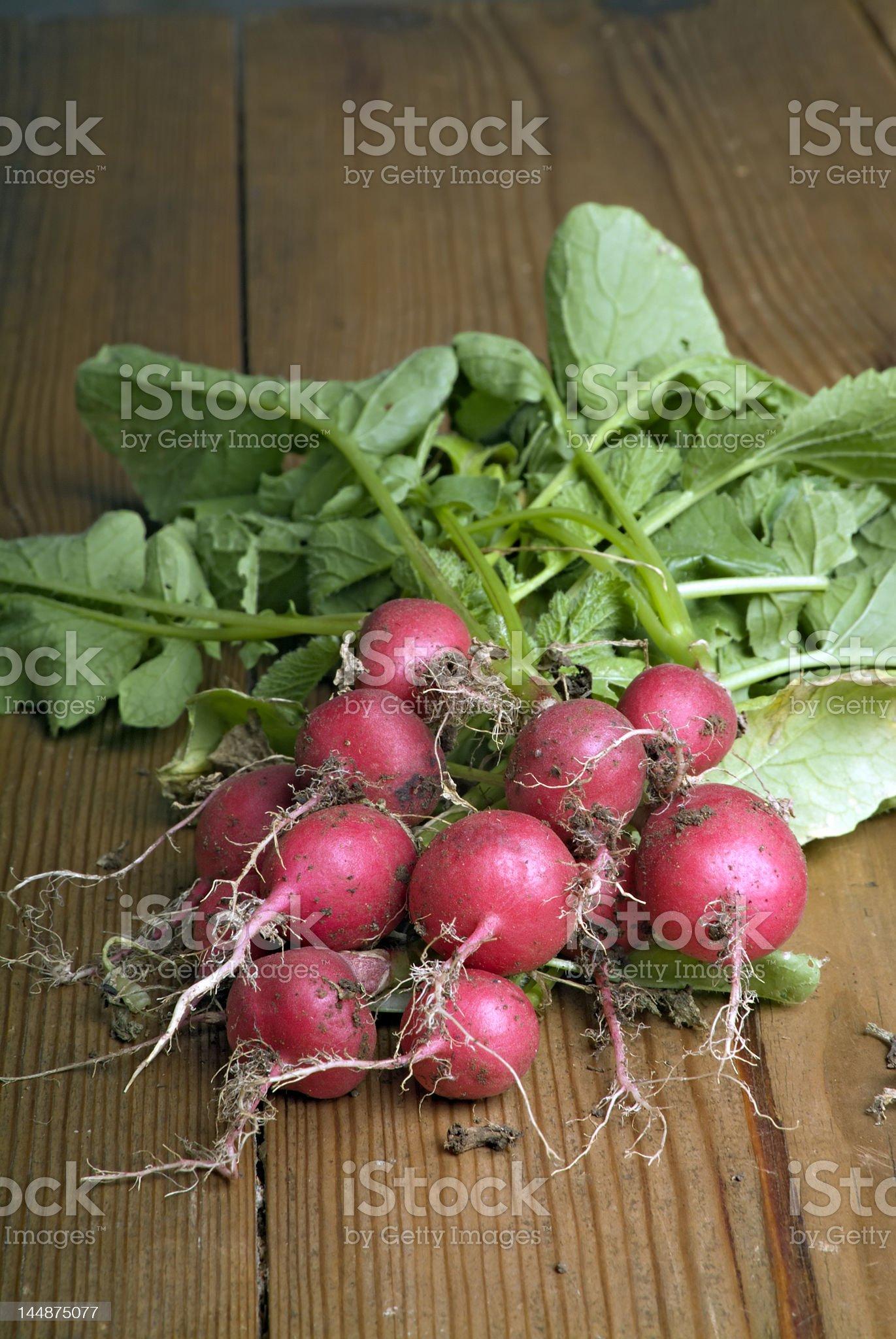 radishes royalty-free stock photo