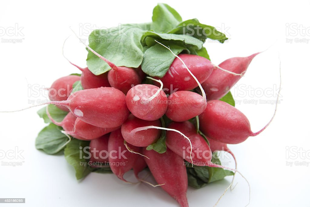 Radishes stock photo