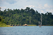 Raft resort at Cheowlan Lake in Khao Sok Nation Park