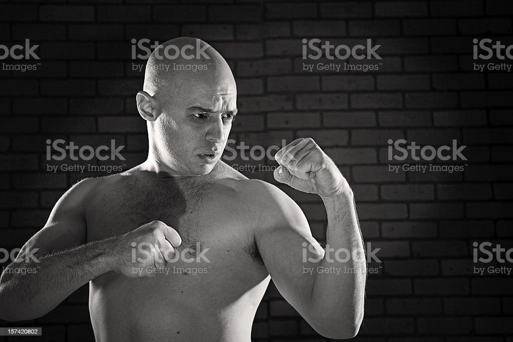 Raging Bull royalty-free stock photo