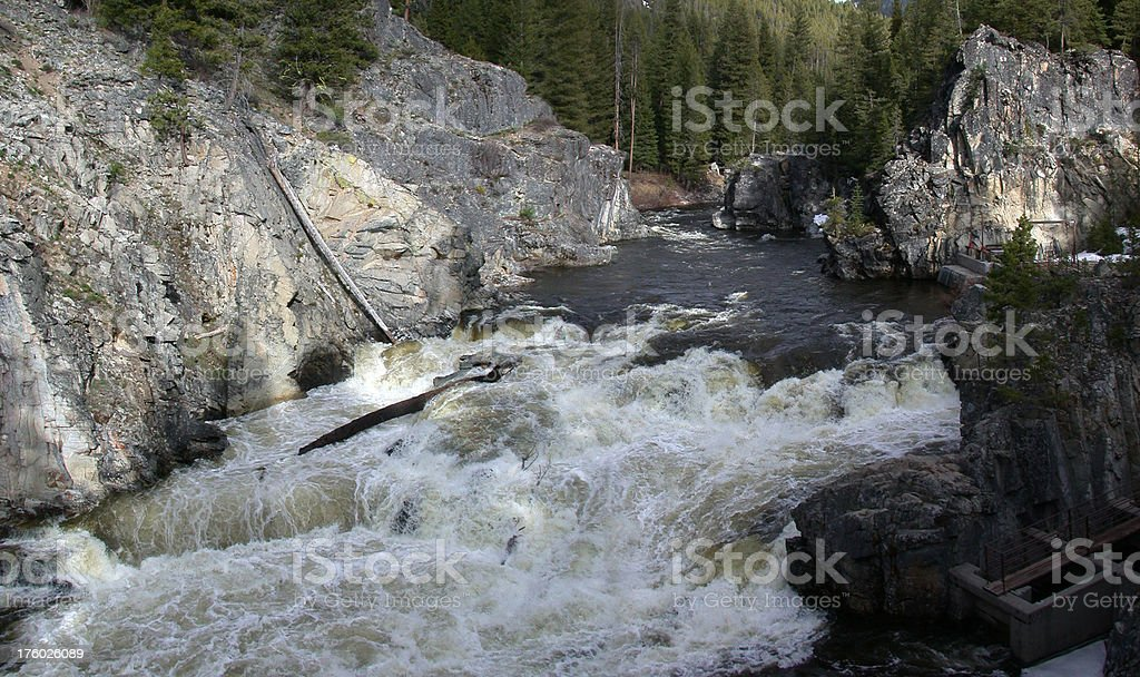 Raging falls royalty-free stock photo