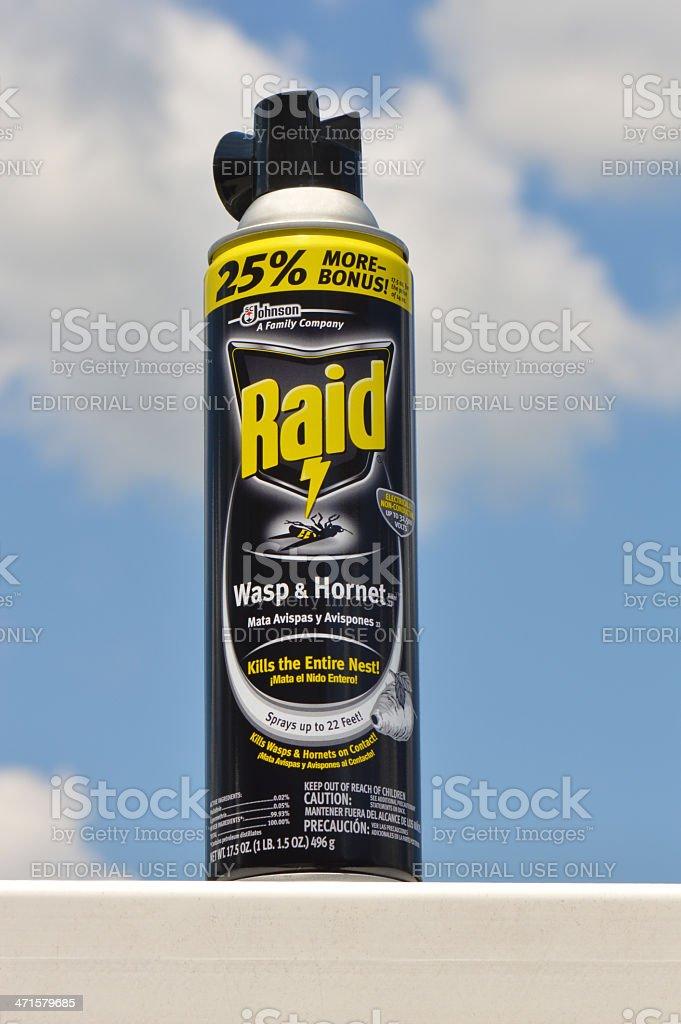 Raid Wasp and Hornet Killer royalty-free stock photo