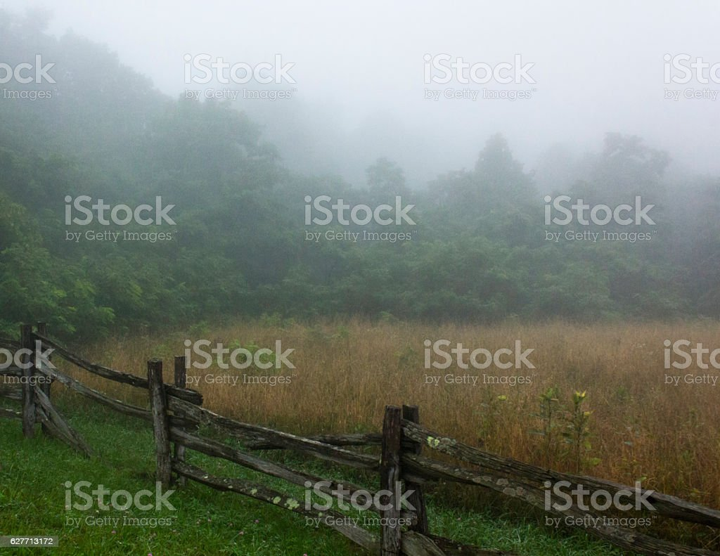 Rail fence and meadow in fog stock photo