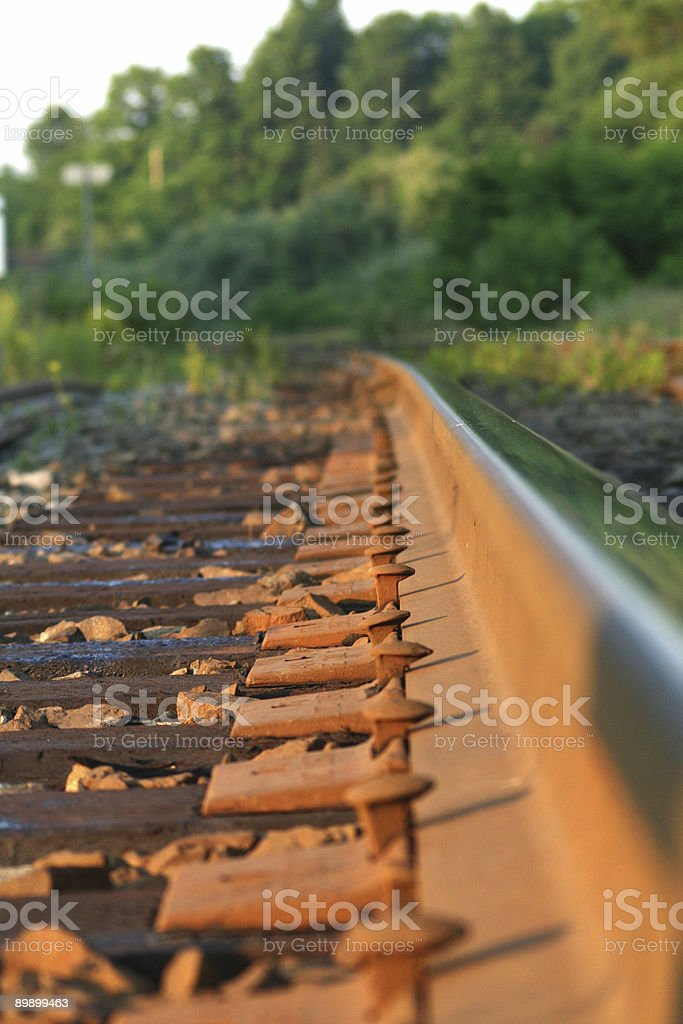 Rail Spikes royalty-free stock photo