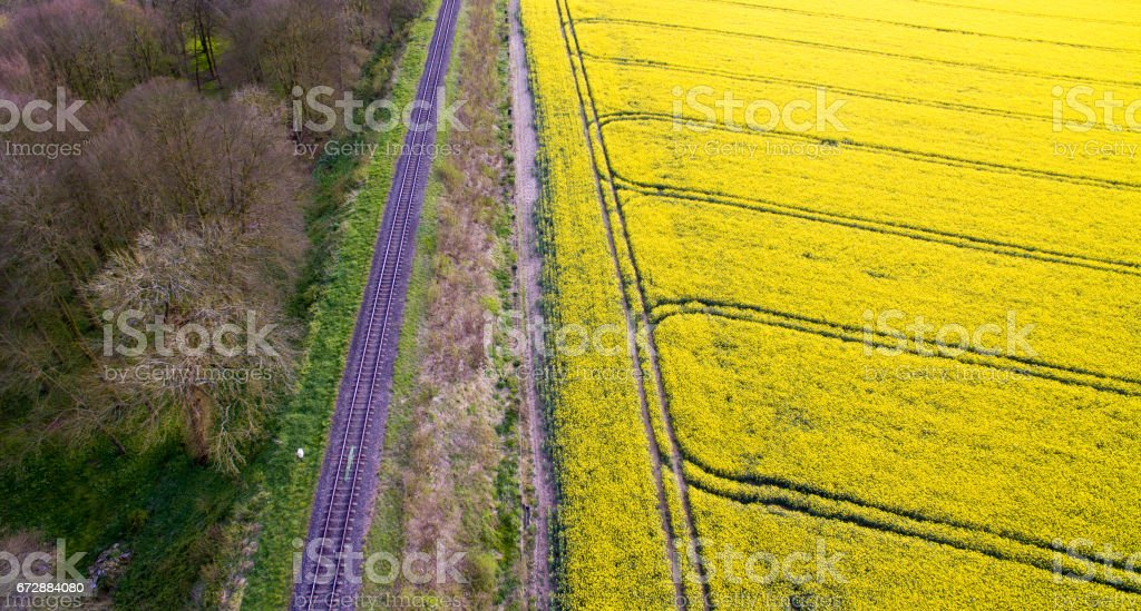 Rail Track Past Forest with Rapeseed Field on One Side stock photo