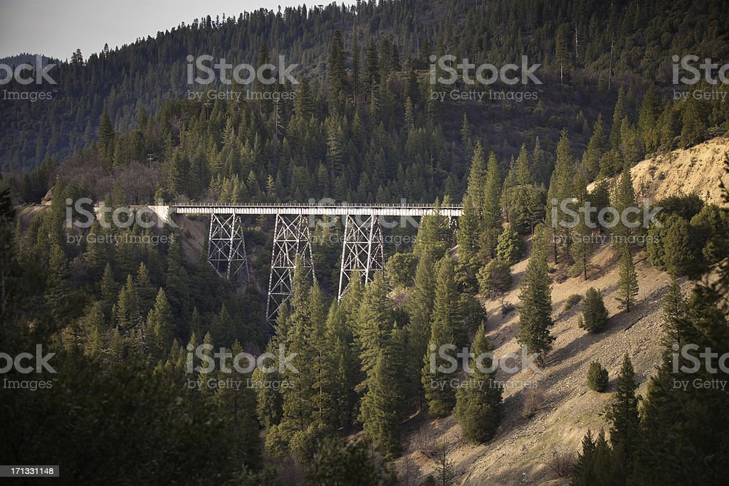 Railroad Bridge Thorugh Northern California Forest royalty-free stock photo