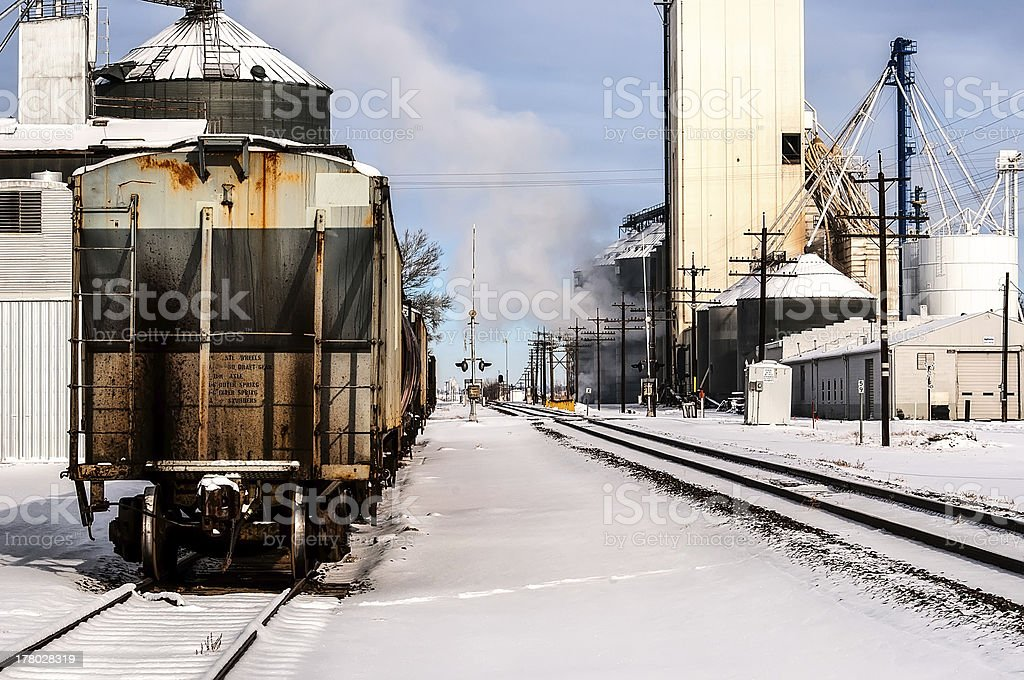 Railroad Cars on a Siding royalty-free stock photo