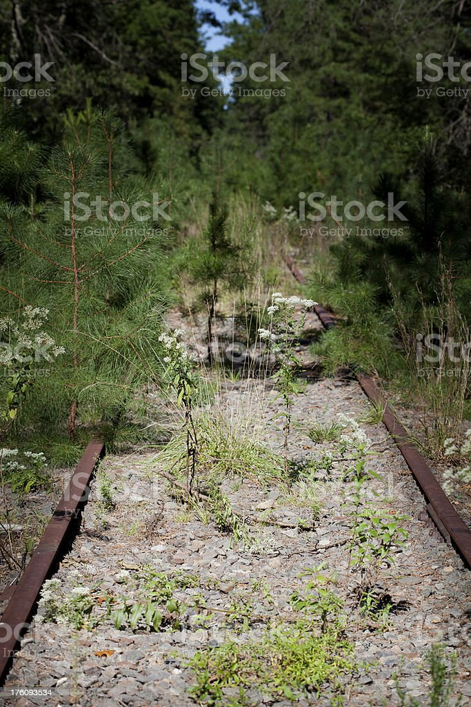 Railroad to Nowhere stock photo