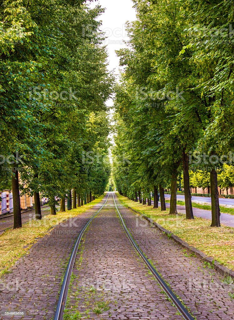 Railroad track covered trees in Prague, Czech Republic stock photo