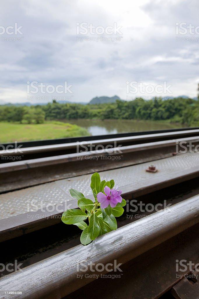railroad track over Kwai River near Hellfire Pass Thailand stock photo