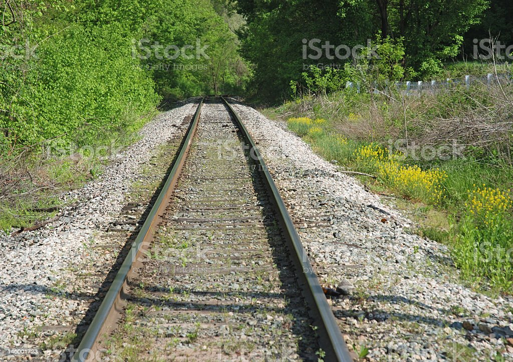 Railroad Tracks in Early Spring royalty-free stock photo