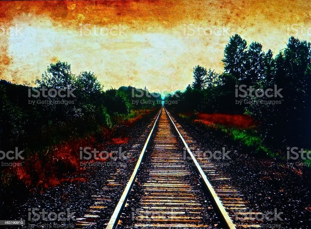 Railroad tracks in the wetlands stock photo