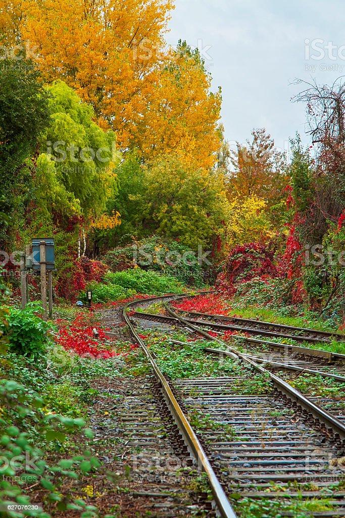 Railroad tracks on Autumn royalty-free stock photo