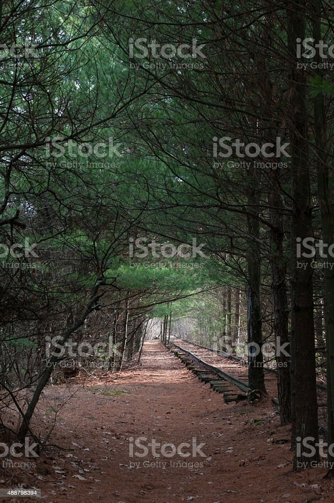 Railroad Tracks Through Woods - New England stock photo