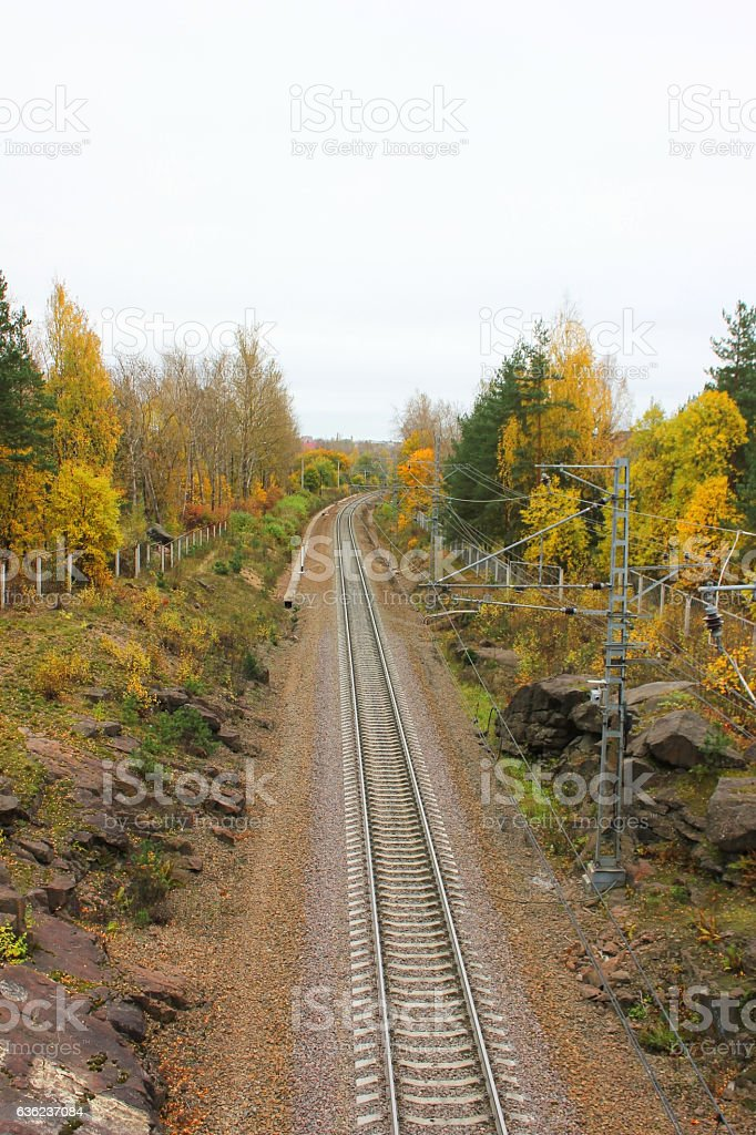 Railroad train track in the forest stock photo