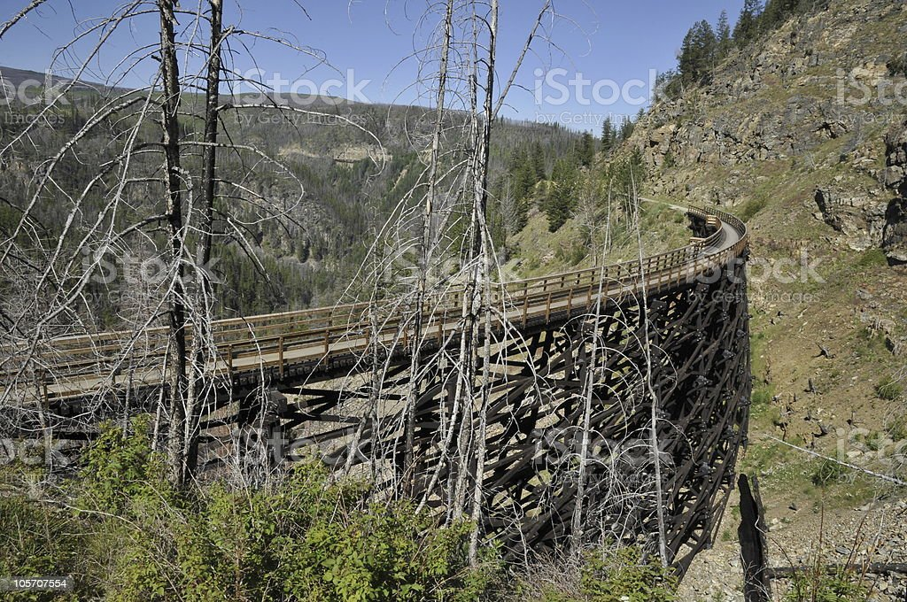 Railroad Trestle. royalty-free stock photo