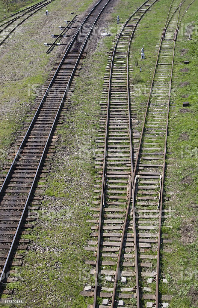 Rails in green grass stock photo