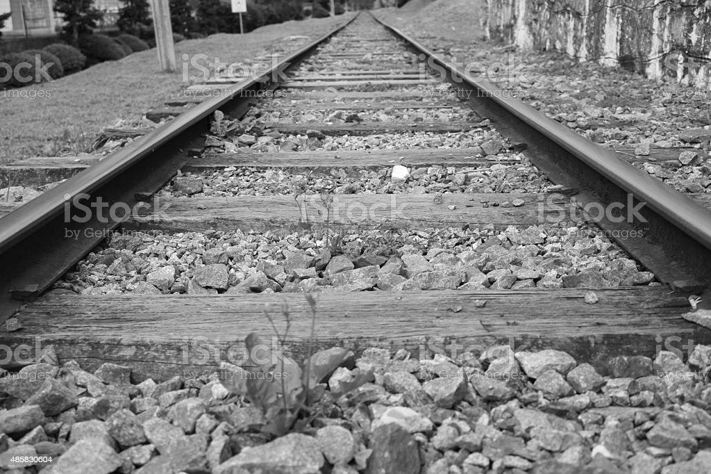 Rails of the Campos do Jordão stock photo