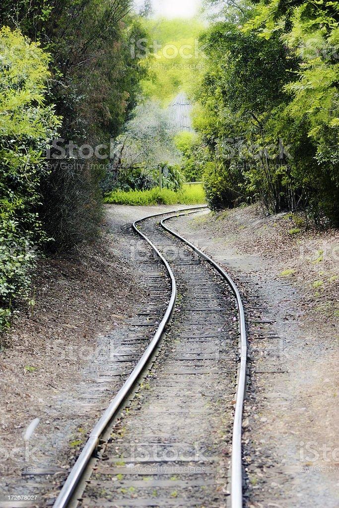 Rails through the fog & woods royalty-free stock photo