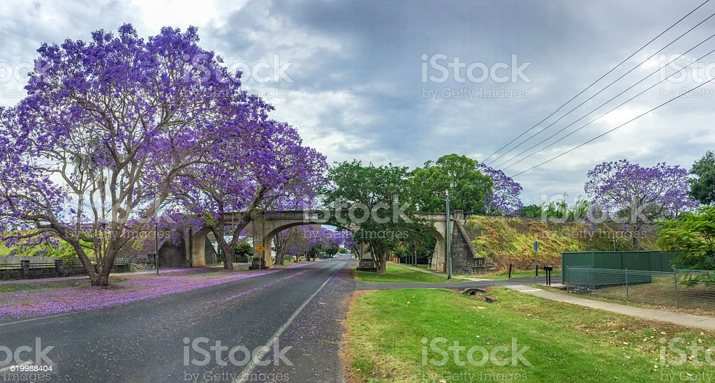 Railway Bridge and Street in Grafton, Australia during Jacaranda Season stock photo
