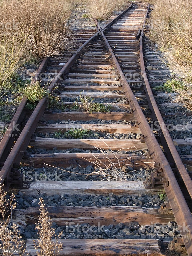 Railway crossing abandoned invaded by bush and weed royalty-free stock photo