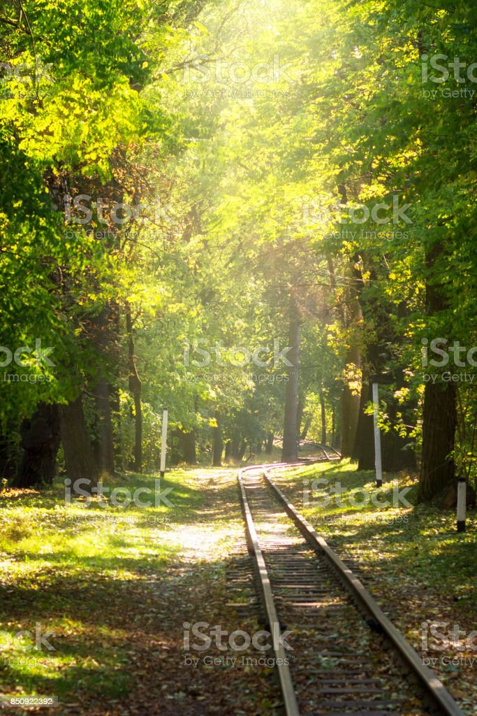 Railway in the autumn park. stock photo