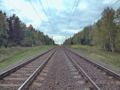 Railway stretching to the horizon in the forest