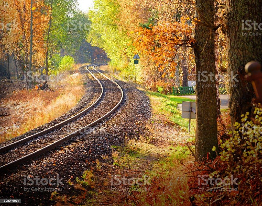 Railway through fall woods stock photo