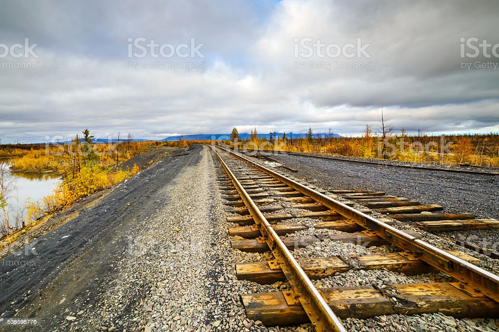 Railway track. Late autumn in the Arctic tundra. stock photo
