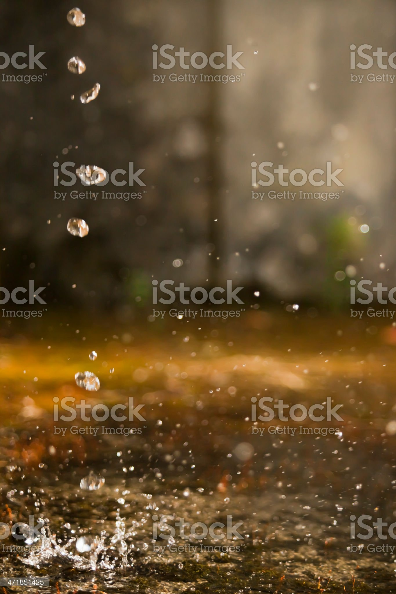 Rain and leak royalty-free stock photo