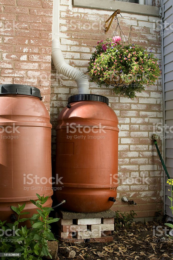 Rain Barrels stock photo