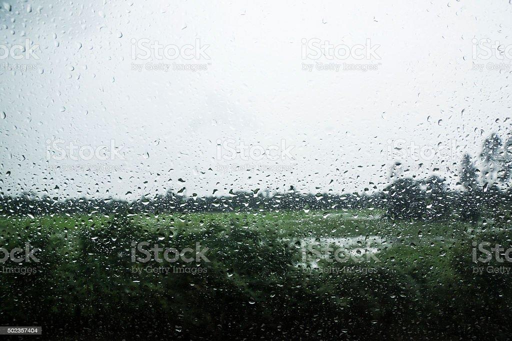 Rain condensation on window. stock photo