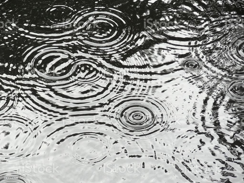 Rain drop ripples on water. stock photo